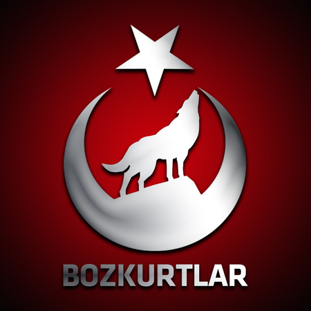 gray wolves bozkurtlar